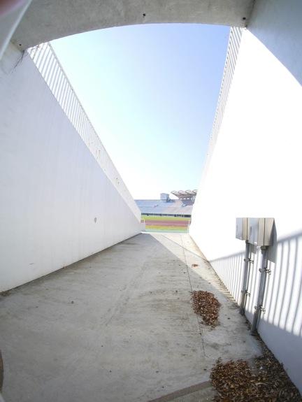 P1010255.jpg