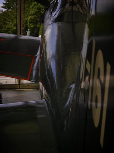 P4480807.jpg